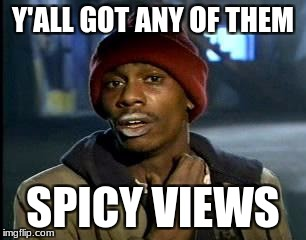 Y'all Got Any More Of That Meme | Y'ALL GOT ANY OF THEM SPICY VIEWS | image tagged in memes,yall got any more of | made w/ Imgflip meme maker
