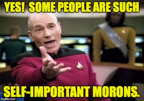 Picard Wtf Meme | YES!  SOME PEOPLE ARE SUCH SELF-IMPORTANT MORONS. | image tagged in memes,picard wtf | made w/ Imgflip meme maker