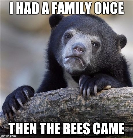 Then the beez came | I HAD A FAMILY ONCE THEN THE BEES CAME | image tagged in memes,confession bear,toodank4yall | made w/ Imgflip meme maker