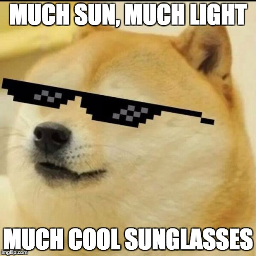 Sunglass Doge | MUCH SUN, MUCH LIGHT MUCH COOL SUNGLASSES | image tagged in sunglass doge | made w/ Imgflip meme maker