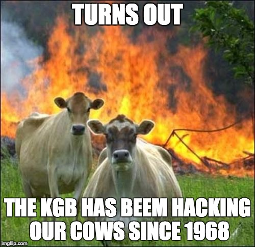 Evil Cows Meme | TURNS OUT THE KGB HAS BEEM HACKING OUR COWS SINCE 1968 | image tagged in memes,evil cows | made w/ Imgflip meme maker