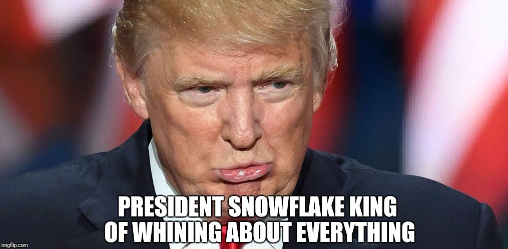 President Snowflake |  PRESIDENT SNOWFLAKE KING OF WHINING ABOUT EVERYTHING | image tagged in impeach trump,trump lies,trump sucks | made w/ Imgflip meme maker