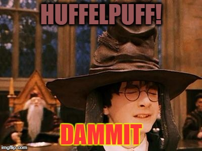 Harry Potter Hat |  HUFFELPUFF! DAMMIT | image tagged in harry potter hat | made w/ Imgflip meme maker
