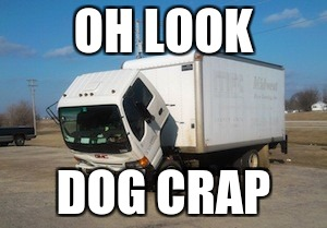 ...ok then | OH LOOK DOG CRAP | image tagged in memes,okay truck | made w/ Imgflip meme maker