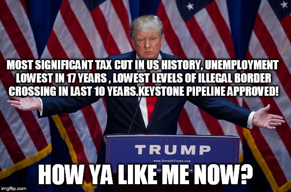Donald Trump | MOST SIGNIFICANT TAX CUT IN US HISTORY, UNEMPLOYMENT LOWEST IN 17 YEARS , LOWEST LEVELS OF ILLEGAL BORDER CROSSING IN LAST 10 YEARS.KEYSTONE | image tagged in donald trump | made w/ Imgflip meme maker