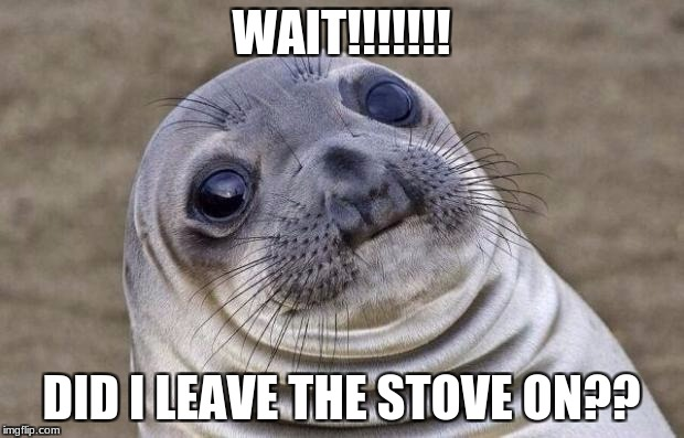 Awkward Moment Sealion Meme | WAIT!!!!!!! DID I LEAVE THE STOVE ON?? | image tagged in memes,awkward moment sealion | made w/ Imgflip meme maker