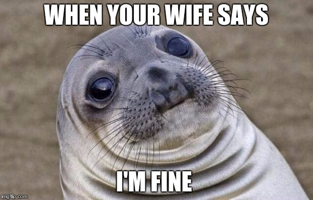 Awkward Moment Sealion Meme | WHEN YOUR WIFE SAYS I'M FINE | image tagged in memes,awkward moment sealion | made w/ Imgflip meme maker
