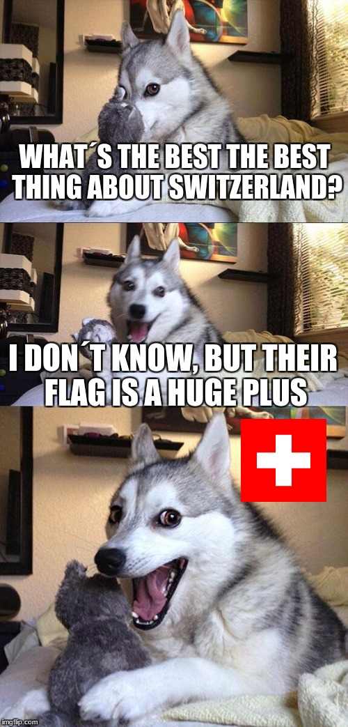 Bad Pun Dog Meme | WHAT´S THE BEST THE BEST THING ABOUT SWITZERLAND? I DON´T KNOW, BUT THEIR FLAG IS A HUGE PLUS | image tagged in memes,bad pun dog | made w/ Imgflip meme maker