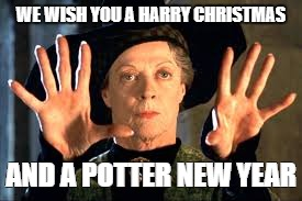Harry Potter | WE WISH YOU A HARRY CHRISTMAS AND A POTTER NEW YEAR | image tagged in harry potter | made w/ Imgflip meme maker