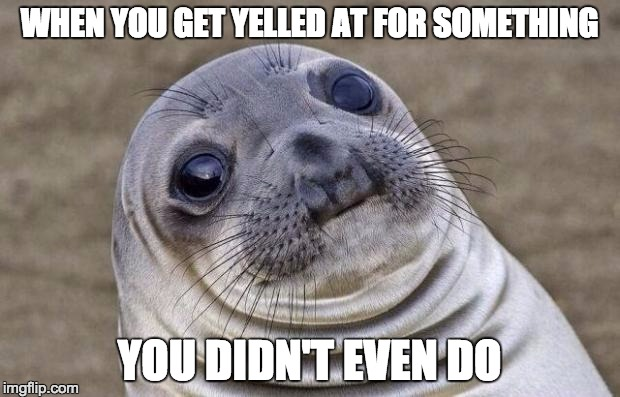 Awkward Moment Sealion Meme | WHEN YOU GET YELLED AT FOR SOMETHING YOU DIDN'T EVEN DO | image tagged in memes,awkward moment sealion | made w/ Imgflip meme maker