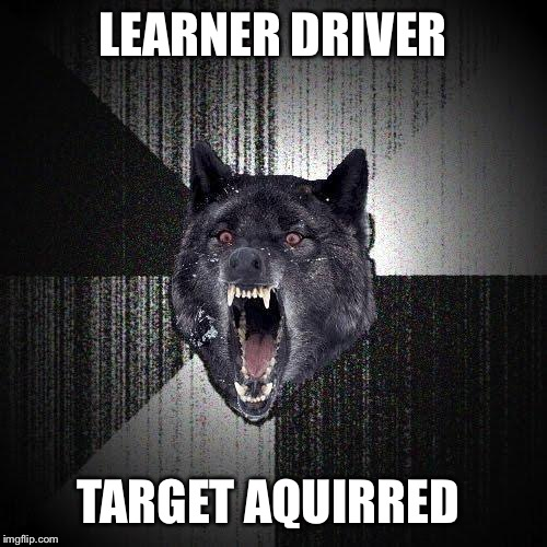 Insanity Wolf Meme | LEARNER DRIVER TARGET AQUIRRED | image tagged in memes,insanity wolf | made w/ Imgflip meme maker