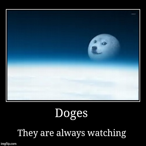 Doges | They are always watching | image tagged in funny,demotivationals | made w/ Imgflip demotivational maker
