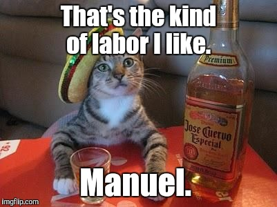 That's the kind of labor I like. Manuel. | made w/ Imgflip meme maker