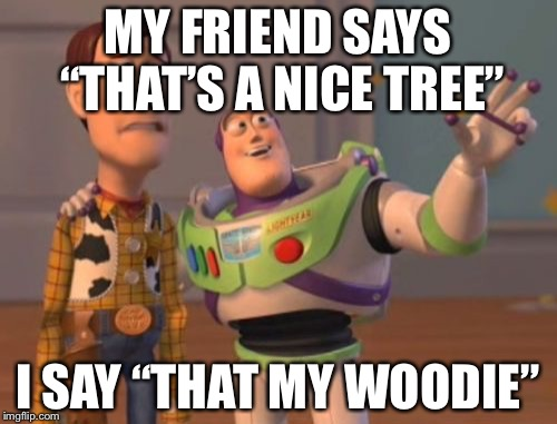 "X, X Everywhere Meme | MY FRIEND SAYS ""THAT'S A NICE TREE"" I SAY ""THAT MY WOODIE"" 