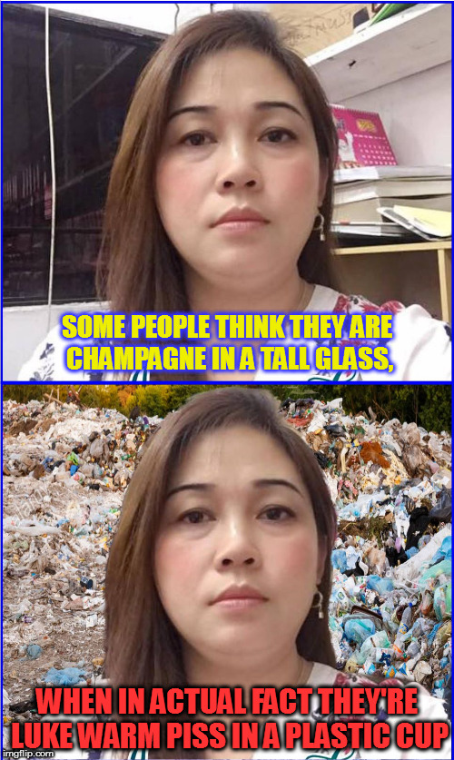 Some People | SOME PEOPLE THINK THEY ARE CHAMPAGNE IN A TALL GLASS, WHEN IN ACTUAL FACT THEY'RE LUKE WARM PISS IN A PLASTIC CUP | image tagged in expectation vs reality,funny memes,fake people,funny,roasted | made w/ Imgflip meme maker