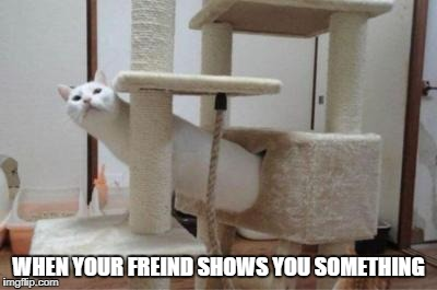 :) | WHEN YOUR FREIND SHOWS YOU SOMETHING | image tagged in lol,funny,memes,lmao,lmfao,haha | made w/ Imgflip meme maker