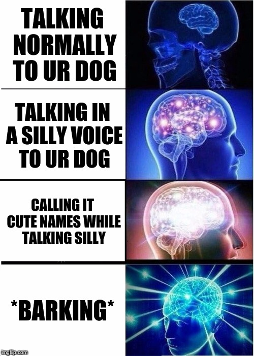 Expanding Brain Meme | TALKING NORMALLY TO UR DOG TALKING IN A SILLY VOICE TO UR DOG CALLING IT CUTE NAMES WHILE TALKING SILLY *BARKING* | image tagged in memes,expanding brain | made w/ Imgflip meme maker