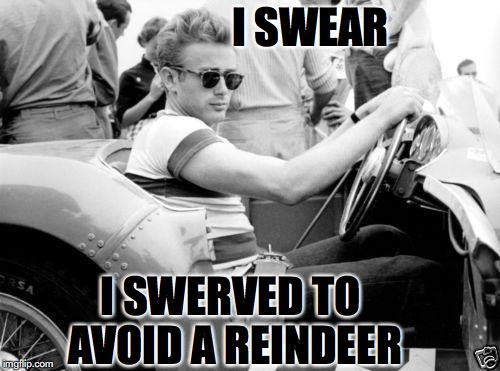 I SWEAR I SWERVED TO AVOID A REINDEER | made w/ Imgflip meme maker