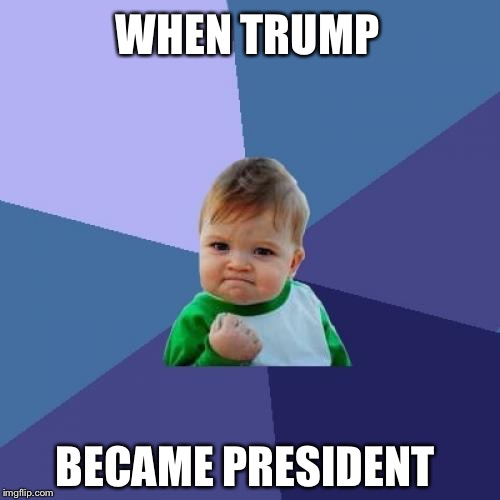 Success Kid Meme | WHEN TRUMP BECAME PRESIDENT | image tagged in memes,success kid | made w/ Imgflip meme maker