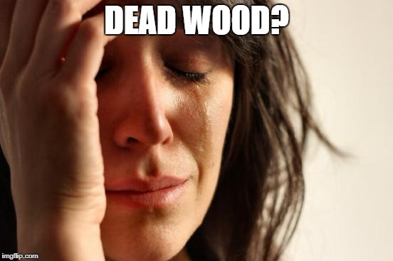 First World Problems Meme | DEAD WOOD? | image tagged in memes,first world problems | made w/ Imgflip meme maker