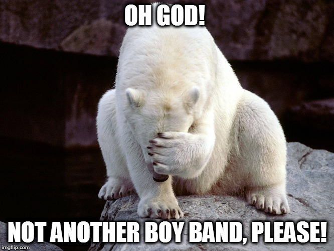 OH GOD! NOT ANOTHER BOY BAND, PLEASE! | made w/ Imgflip meme maker