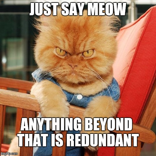 JUST SAY MEOW ANYTHING BEYOND THAT IS REDUNDANT | made w/ Imgflip meme maker