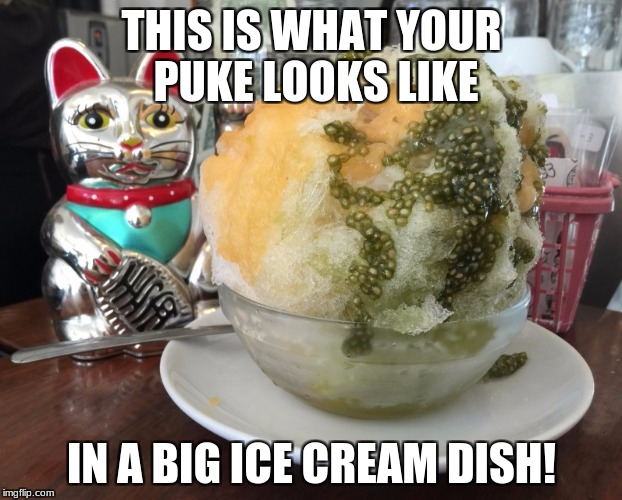 Puke in a big ice cream bowl | THIS IS WHAT YOUR PUKE LOOKS LIKE IN A BIG ICE CREAM DISH! | image tagged in shaved ice foreign | made w/ Imgflip meme maker
