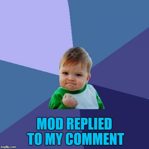 Success Kid Meme | MOD REPLIED TO MY COMMENT | image tagged in memes,success kid | made w/ Imgflip meme maker