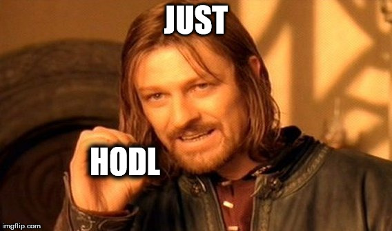 One Does Not Simply Meme | JUST HODL | image tagged in memes,one does not simply | made w/ Imgflip meme maker