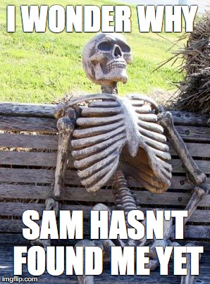 Waiting Skeleton Meme | I WONDER WHY SAM HASN'T FOUND ME YET | image tagged in memes,waiting skeleton | made w/ Imgflip meme maker