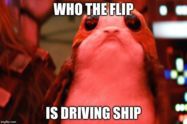 WHO THE FLIP; IS DRIVING SHIP | image tagged in porg | made w/ Imgflip meme maker