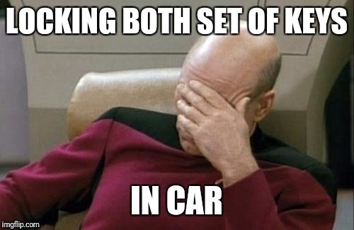 Locking keys in car | LOCKING BOTH SET OF KEYS IN CAR | image tagged in memes,captain picard facepalm | made w/ Imgflip meme maker