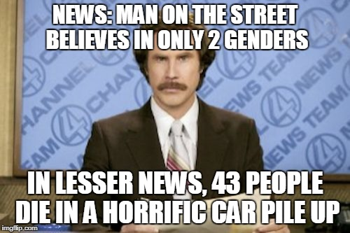 Modern New Be Like: | NEWS: MAN ON THE STREET BELIEVES IN ONLY 2 GENDERS IN LESSER NEWS, 43 PEOPLE DIE IN A HORRIFIC CAR PILE UP | image tagged in memes,ron burgundy,funny,news,fake news | made w/ Imgflip meme maker