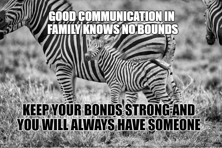 Family bonds | GOOD COMMUNICATION IN FAMILY KNOWS NO BOUNDS KEEP YOUR BONDS STRONG AND YOU WILL ALWAYS HAVE SOMEONE | image tagged in family,life,inspirational,motivation,bonds,communication | made w/ Imgflip meme maker