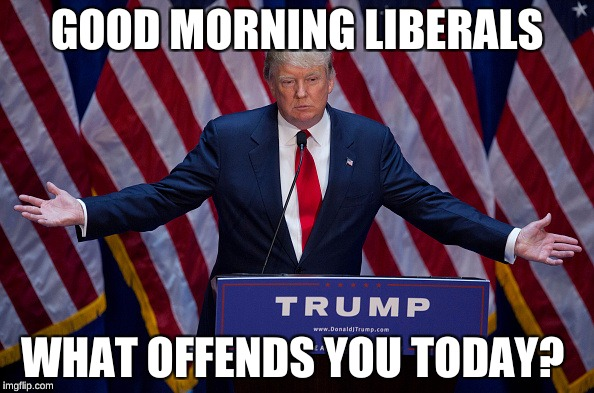 Donald Trump | GOOD MORNING LIBERALS WHAT OFFENDS YOU TODAY? | image tagged in donald trump | made w/ Imgflip meme maker