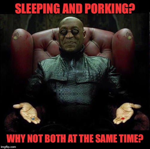SLEEPING AND PORKING? WHY NOT BOTH AT THE SAME TIME? | made w/ Imgflip meme maker