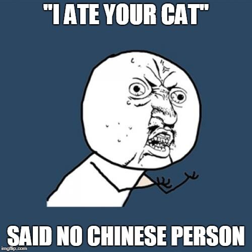 "Y U No Meme | ""I ATE YOUR CAT"" SAID NO CHINESE PERSON 