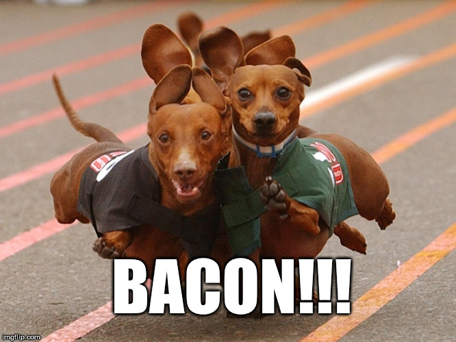 BACON!!! | image tagged in bacon | made w/ Imgflip meme maker