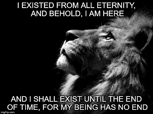 sad lion | I EXISTED FROM ALL ETERNITY, AND BEHOLD, I AM HERE AND I SHALL EXIST UNTIL THE END OF TIME, FOR MY BEING HAS NO END | image tagged in sad lion | made w/ Imgflip meme maker