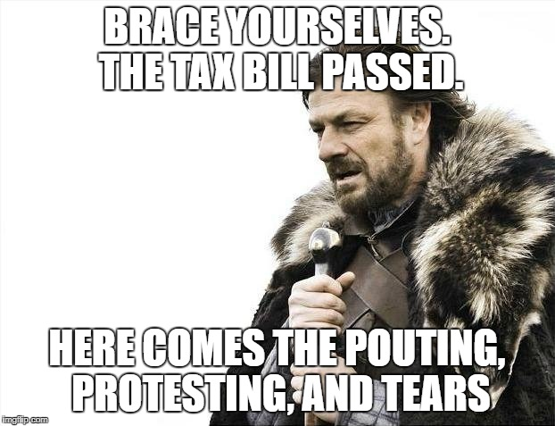 Brace Yourselves X is Coming | BRACE YOURSELVES. THE TAX BILL PASSED. HERE COMES THE POUTING, PROTESTING, AND TEARS | image tagged in memes,brace yourselves x is coming | made w/ Imgflip meme maker
