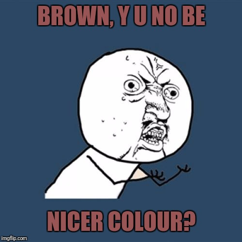 Y U No Meme | BROWN, Y U NO BE NICER COLOUR? | image tagged in memes,y u no | made w/ Imgflip meme maker