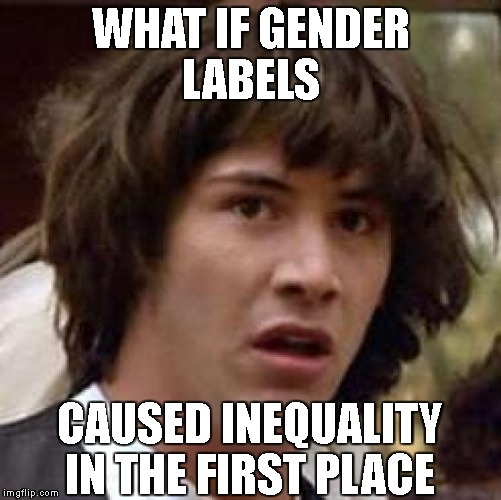 Conspiracy Keanu Meme | WHAT IF GENDER LABELS CAUSED INEQUALITY IN THE FIRST PLACE | image tagged in memes,conspiracy keanu | made w/ Imgflip meme maker