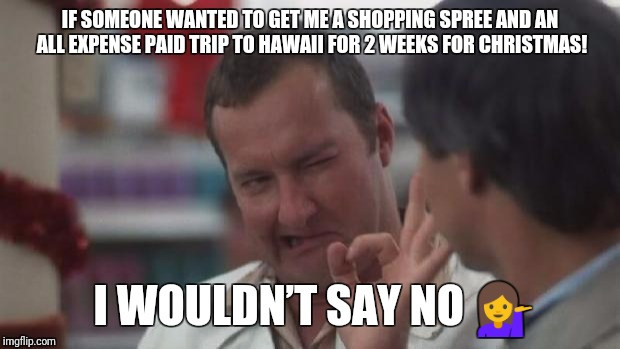 Real Nice - Christmas Vacation | IF SOMEONE WANTED TO GET ME A SHOPPING SPREE AND AN ALL EXPENSE PAID TRIP TO HAWAII FOR 2 WEEKS FOR CHRISTMAS! I WOULDN'T SAY NO  | image tagged in real nice - christmas vacation | made w/ Imgflip meme maker