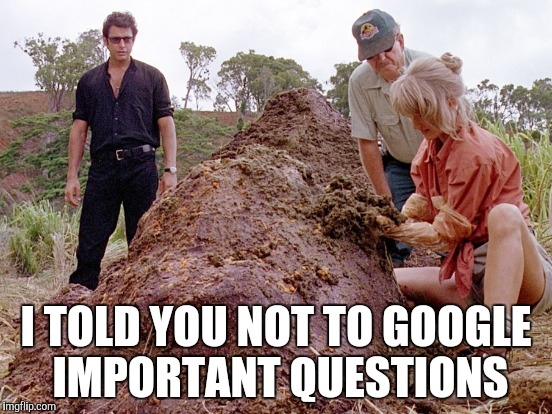 I TOLD YOU NOT TO GOOGLE IMPORTANT QUESTIONS | made w/ Imgflip meme maker