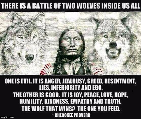 Words of Wisdom Week. A MemefordandSons Event, Dec 16-23 | . | image tagged in cherokee proverb wolves,words of wisdom | made w/ Imgflip meme maker