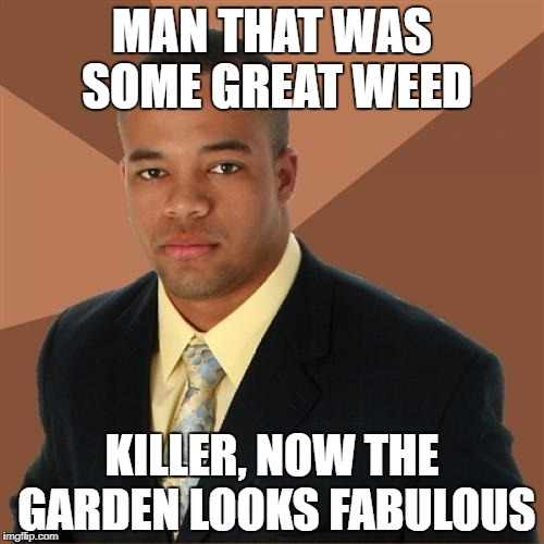 Getting ready for the visiting in-laws | MAN THAT WAS SOME GREAT WEED KILLER, NOW THE GARDEN LOOKS FABULOUS | image tagged in successful black man | made w/ Imgflip meme maker