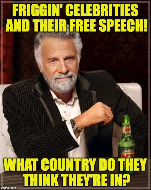 The Most Interesting Man In The World Meme | FRIGGIN' CELEBRITIES AND THEIR FREE SPEECH! WHAT COUNTRY DO THEY THINK THEY'RE IN? | image tagged in memes,the most interesting man in the world | made w/ Imgflip meme maker