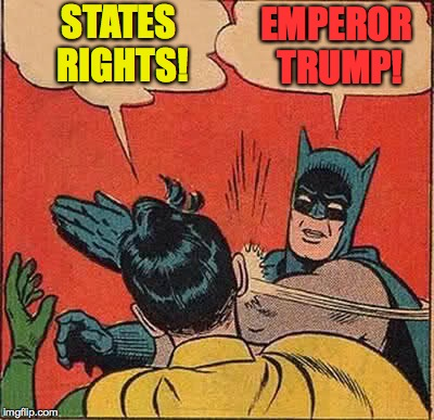 Batman Slapping Robin Meme | STATES RIGHTS! EMPEROR TRUMP! | image tagged in memes,batman slapping robin | made w/ Imgflip meme maker