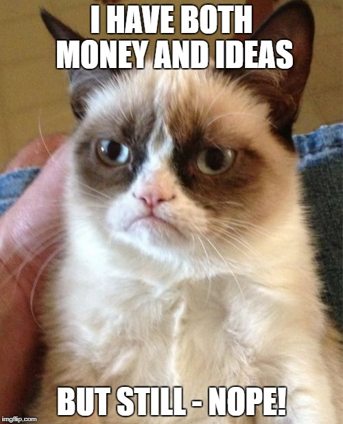 Grumpy Cat Meme | I HAVE BOTH MONEY AND IDEAS BUT STILL - NOPE! | image tagged in memes,grumpy cat | made w/ Imgflip meme maker