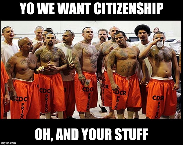 YO WE WANT CITIZENSHIP OH, AND YOUR STUFF | image tagged in illegal aliens for real | made w/ Imgflip meme maker
